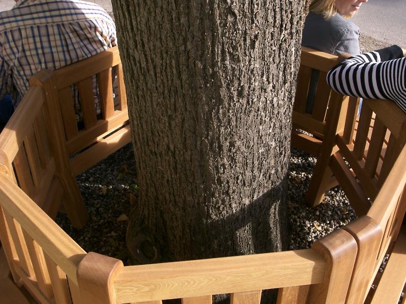 boombank van fsc hardhout om boom 8 hoekig